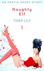 Naughty-Elf-1-Cover-250x156